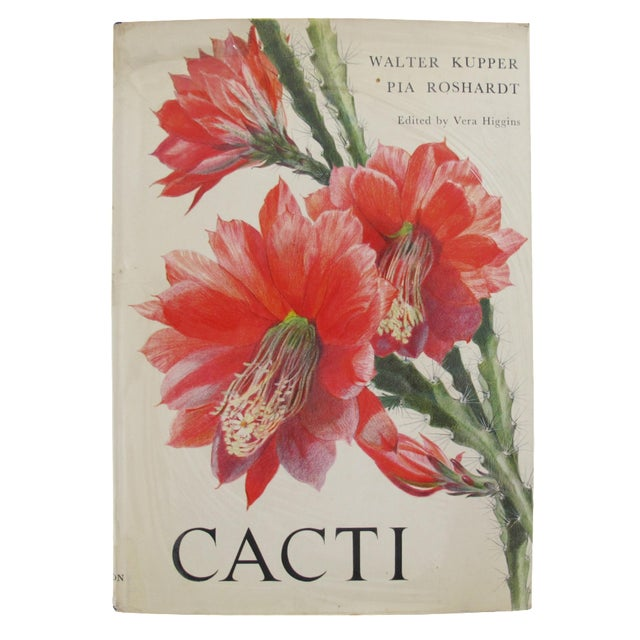 Cacti by Walter Kupper and Pia Roshardt - Image 1 of 7
