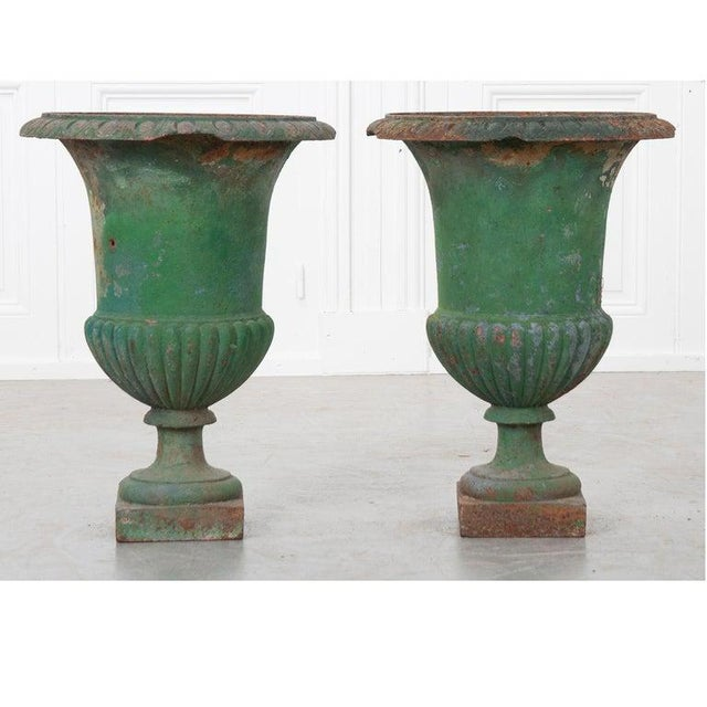 French 19th Century Painted Cast Iron Urns - a Pair For Sale - Image 4 of 8