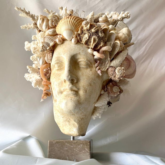 2020s Large Shell Hygiea Bust For Sale - Image 5 of 12