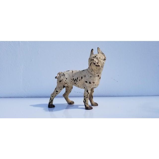 1930s Vintage White Cast Iron Boston Terrier Dog Sculpture / Doorstop For Sale - Image 11 of 11