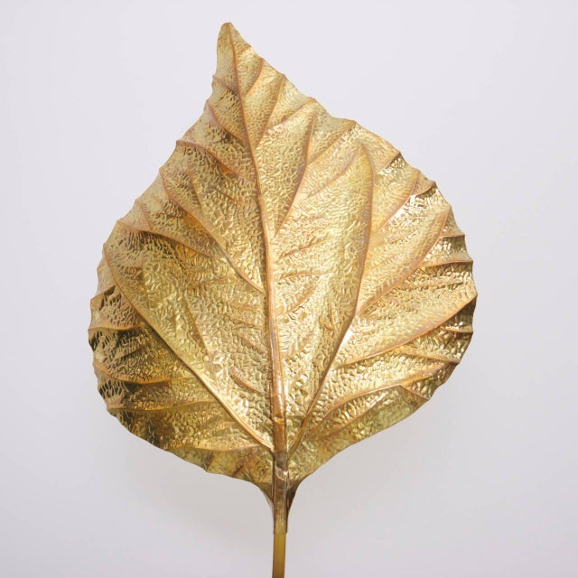 Modern Extraordinary Huge Rhubarb Leaves Brass Floor Lamp by Tommaso Barbi For Sale - Image 3 of 5