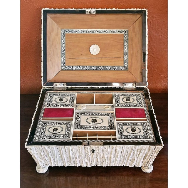 Red 19c Anglo Indian Vizagapatam Stag Antler Horn Sewing Box - Exceptional For Sale - Image 8 of 11