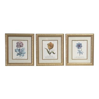 "Three Vintage Floral Plates, Framed and Matted ""Flowers in March"" Prints - Set of 3"