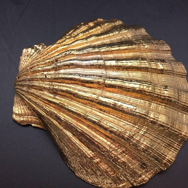 Contemporary Creel and Gow Gold-Plated Pecten Shell, Symbol of Pilgrims & of Emblem of James For Sale - Image 3 of 7