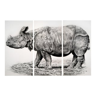 "Contemporary ""Indian Rhino"" Rick Shaefer Charcoal Print For Sale"