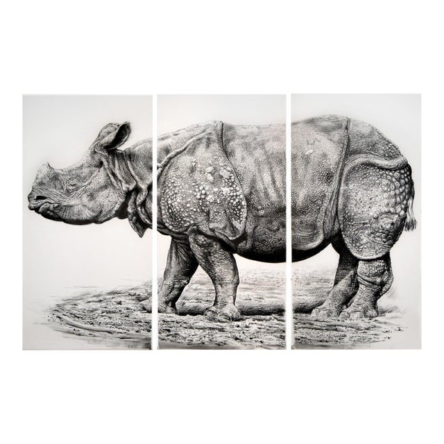 """Contemporary """"Indian Rhino"""" Rick Shaefer Charcoal Print For Sale"""