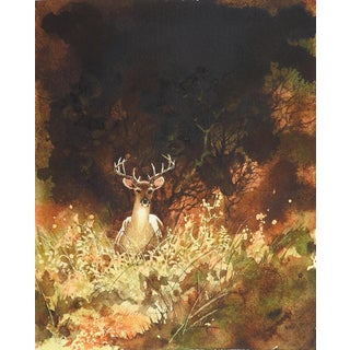 Deer in the Sun Watercolor