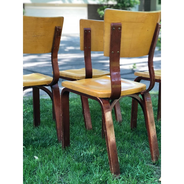 Mid-Century Modern Thonet Bentwood Chairs - Set of 4 For Sale - Image 3 of 8