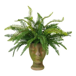 Diane James for Chairish Faux Fern in Mossy Face Planter For Sale