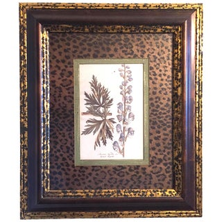"""Vintage """"Botanical I"""" Leopard Animal Print Matte Framed Lithograph by Giorgio Caucacci For Sale"""