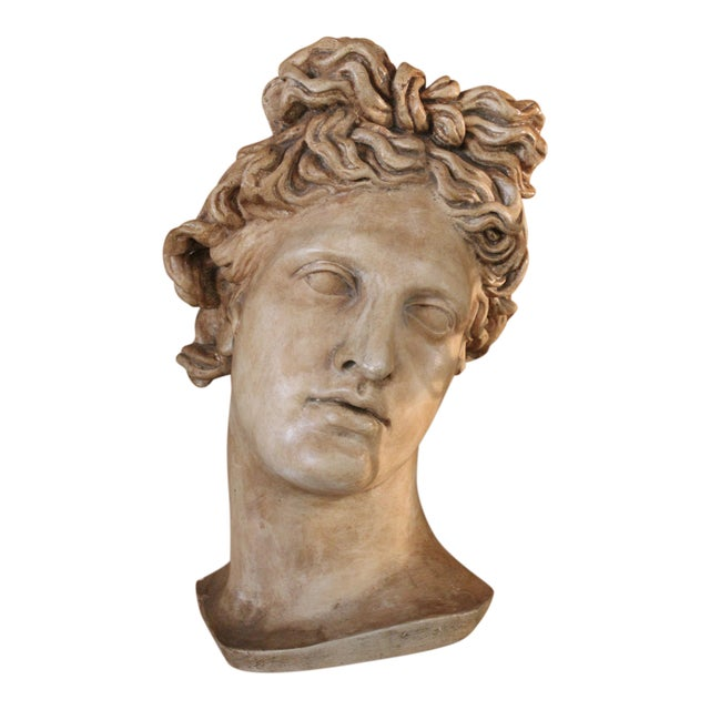 "Plaster ""Apollo Belvedere"" Wall Plaque For Sale"