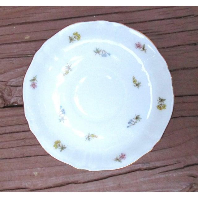 1950s Richard Ginori Italian Porcelain Tea Cups - 24 Piece For Sale - Image 5 of 11