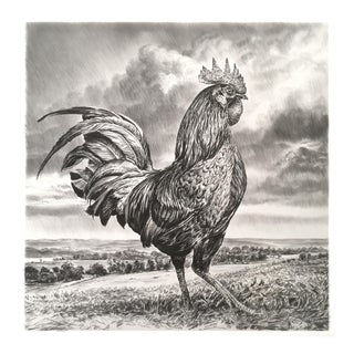 "Contemporary ""Rooster"" Rick Shaefer Charcoal Print For Sale"