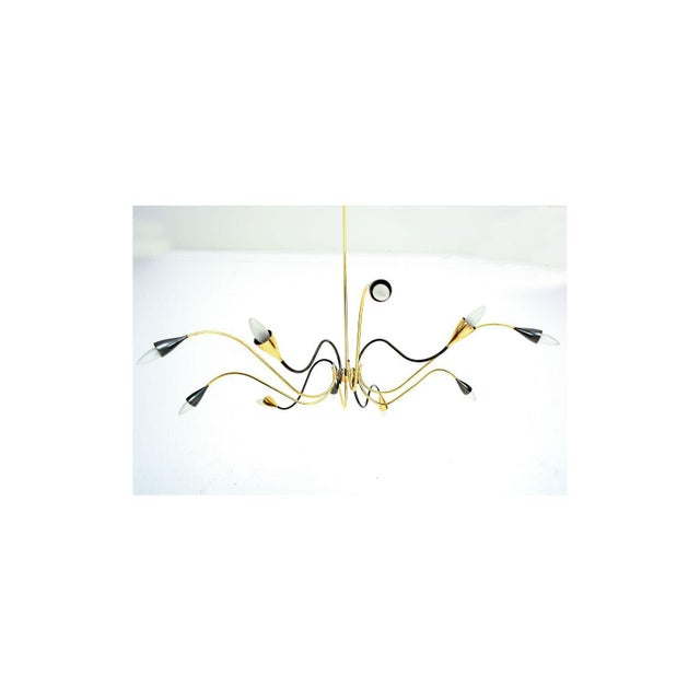1950s Spider Sputnik Stilnovo Style Ten-Arm Brass Chandelier Italy 1950s For Sale - Image 5 of 9
