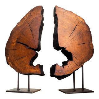 Contemporary Indra Collection Yakisugi Modern Organic Wood Sculpture - Set of Two For Sale