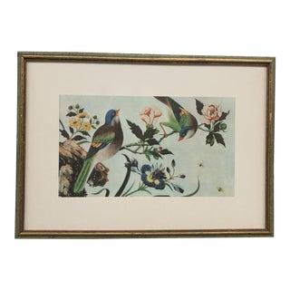 Vintage Chinoiserie Framed Bird Print For Sale