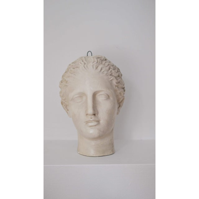 "Figurative Caproni & Brothers 1900s Traditional ""Diana of Gabii"" Plaster Mask For Sale - Image 3 of 10"