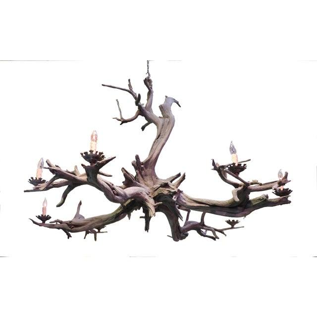 Bronze Driftwood Manzanita Chandelier - Image 6 of 6