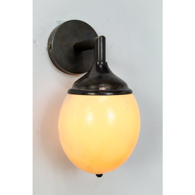 Ostrich Egg Cast Brass Arm Sconce For Sale - Image 9 of 11