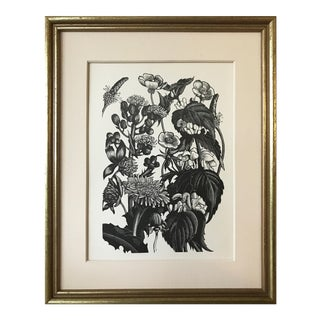 Botanical/ Garden Woodblock by Clare Leighton For Sale