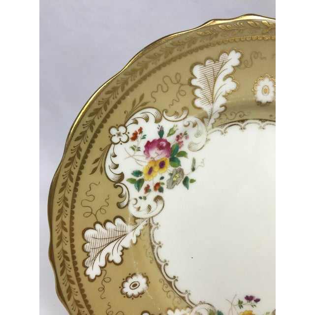 """Rococo Cauldon England for Tiffany New York 9"""" Dinner/Luncheon Plates - Set of 12 For Sale - Image 3 of 9"""