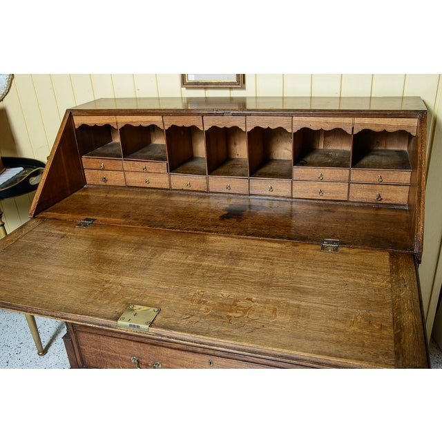 Large scale English oak slant front desk with columned corners upon ogee bracket feet and an interior with many drawers...