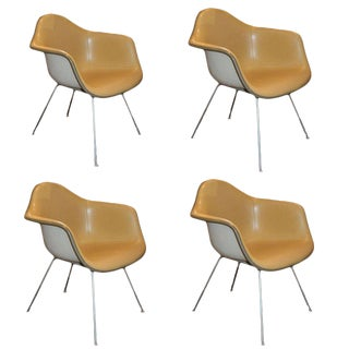 1960s Vintage Herman Miller Charles Eames Shell Chairs- Set of 4 For Sale