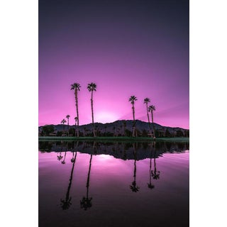 Jason Mageau Purple Palm Springs Photograph For Sale