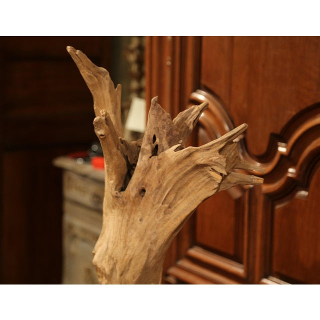 Large Antique Driftwood Sculpture on Green Marble Base For Sale In Dallas - Image 6 of 8
