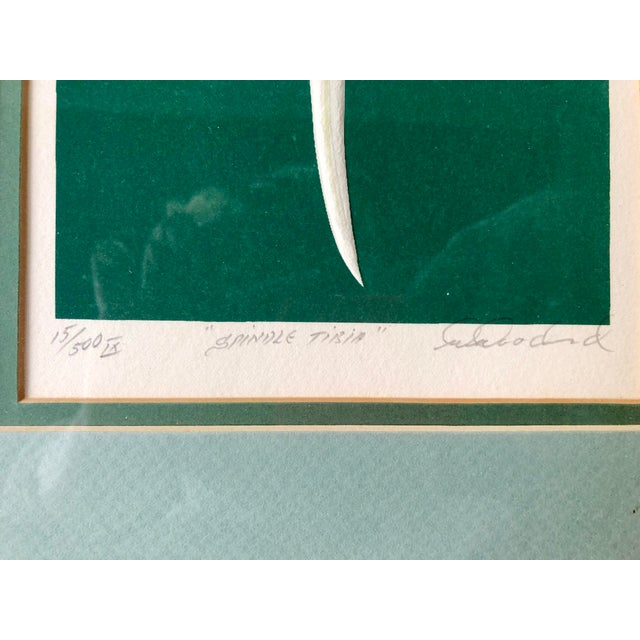 1980s W. Woodard Signed Embossed Shell Framed Print For Sale In Charleston - Image 6 of 9