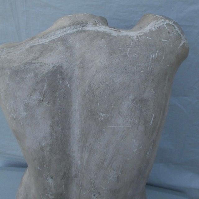 Antique Plaster Cast of Greek Goddess Torso For Sale - Image 10 of 11