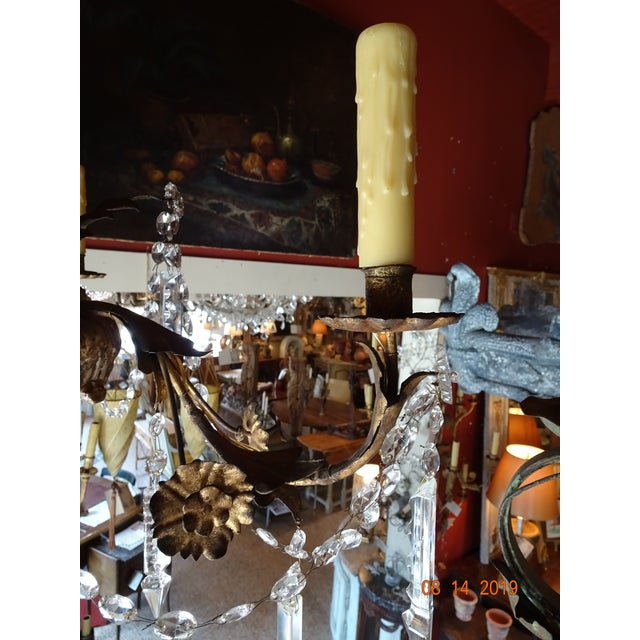 19th Century Italian Crystal Chandelier For Sale In New Orleans - Image 6 of 13