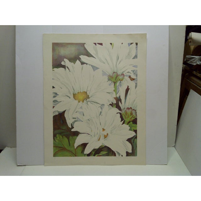 """This is a Limited Edition Signed and Numbered (72/100) Print that is titled """"Daisy Mums"""" by Bukonik."""