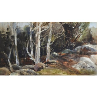 Forest Stream Watercolor Painting For Sale
