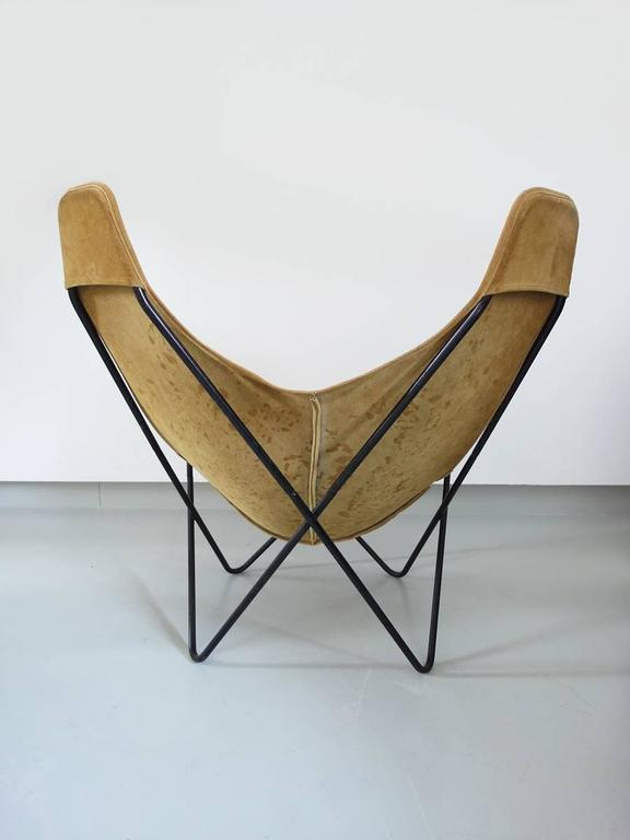 Butterfly Chair By Jorge For Knoll Image Of With Hardoy Chair