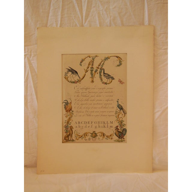 """1790s Illustrated Letter """"M"""" Calligraphy - Image 2 of 7"""