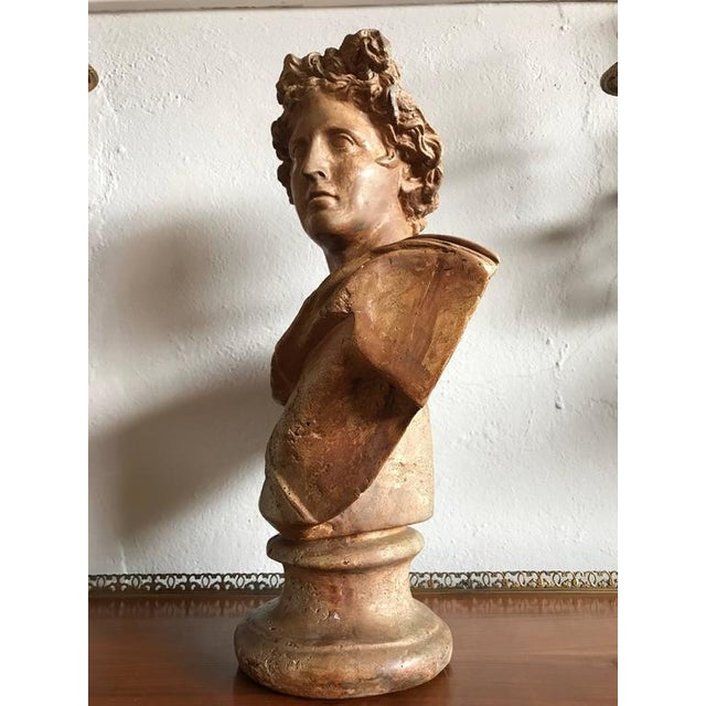 Antique Neoclassical Bust of a Greek God For Sale In New York - Image 6 of 7