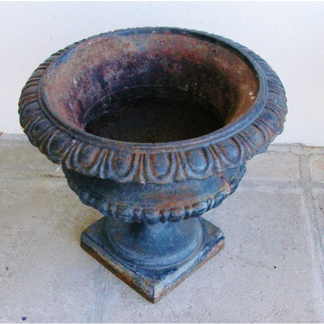 Early 19th-C. Cast Iron Urn Planters - Pair - Image 10 of 11