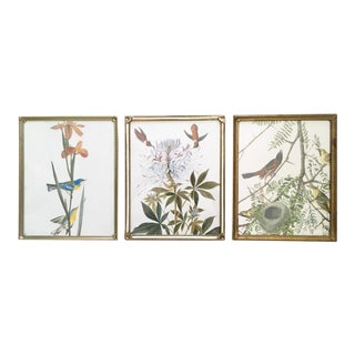 Antique Brass Frames With Glass - Set of 3 For Sale
