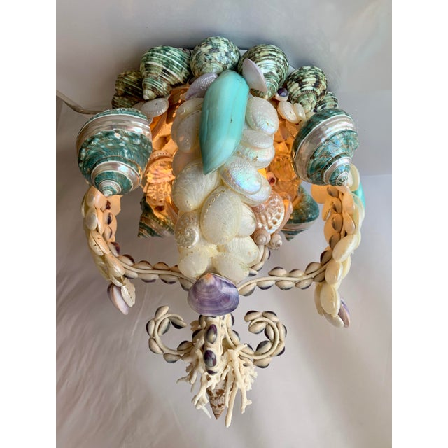Crown of Shells Chandelier For Sale - Image 12 of 12