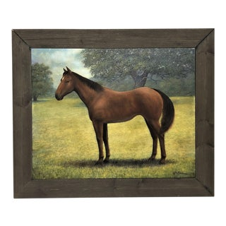 """""""Horse in Meadow"""" Print For Sale"""
