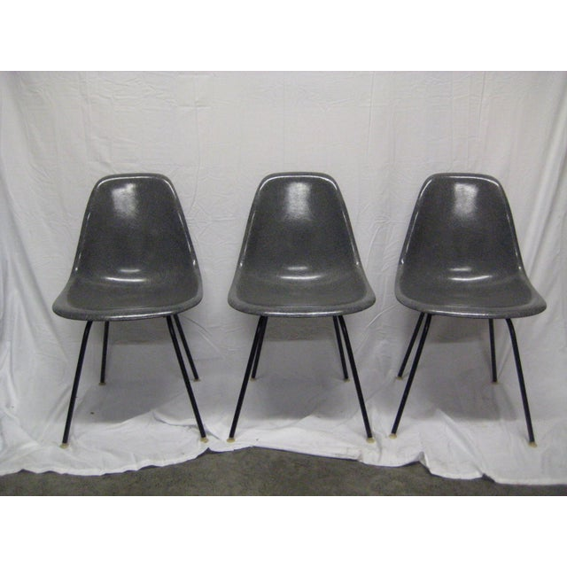 1957 Mid-Century Modern Charles Eames Fiberglass Chairs - Set of 3 For Sale - Image 11 of 11