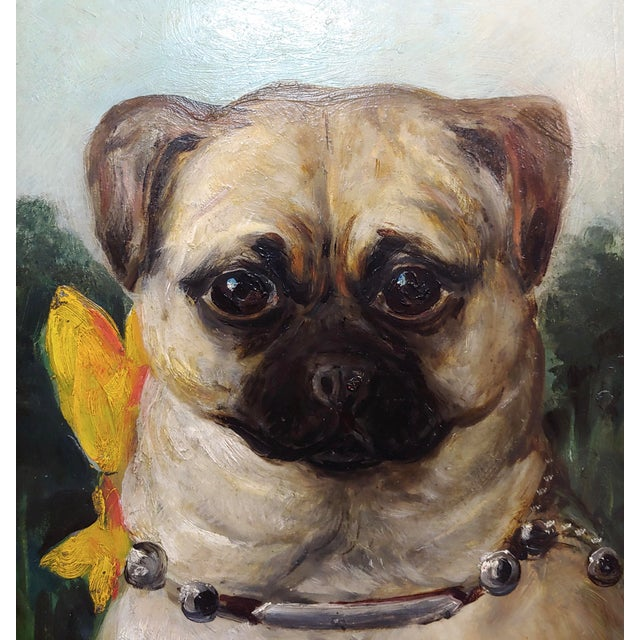 Portrait of a Cute Pug -English School Oil Painting For Sale - Image 4 of 8