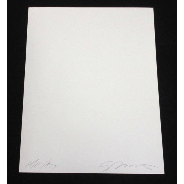 Silver Gelatin Print by Pulitzer Prize Nominated Photographer Matuschka, 1993 For Sale - Image 4 of 6