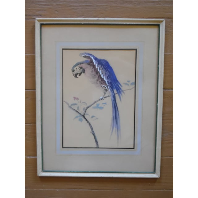 Framed Parrot Picture - Image 2 of 6