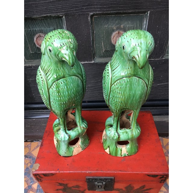 Vibrant Chinese Majolica Parrots, a Pair For Sale - Image 9 of 9