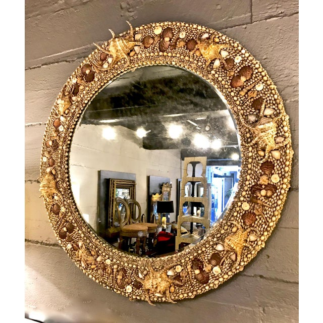 This a superb and very large c. 1980s Maitland-Smith shell encrusted mirror. The mirror is beautifully executed and in...