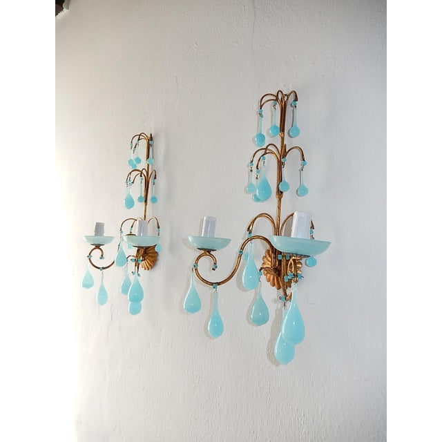 Housing 2 lights each, sitting in blue opaline bobeches. Adorning blue Murano opaline drops and beads. Rewired and ready...