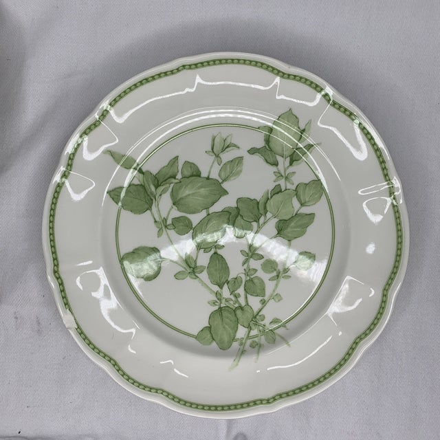 """Richard Ginori China crafted in Italy. """"FRESH HERB"""" pattern, featuring Oregano. 8 5/8 inch salad plate. Appears barely or..."""