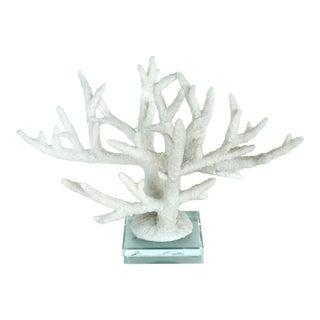 Natural White Coral Specimen Sculpture on Crystal Base For Sale
